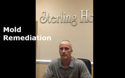 Eric Katz Explains Mold Remediation in Homes