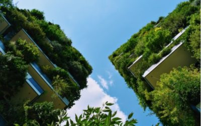 7 Easy Ways To Make Your Home More Eco-Friendly