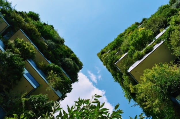 looking up at houses covered in greenery